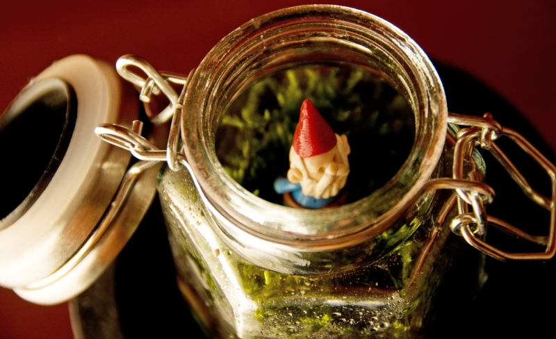 Known Gnome Homes